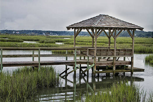 Pawleys Creek Dock by Sandra Anderson