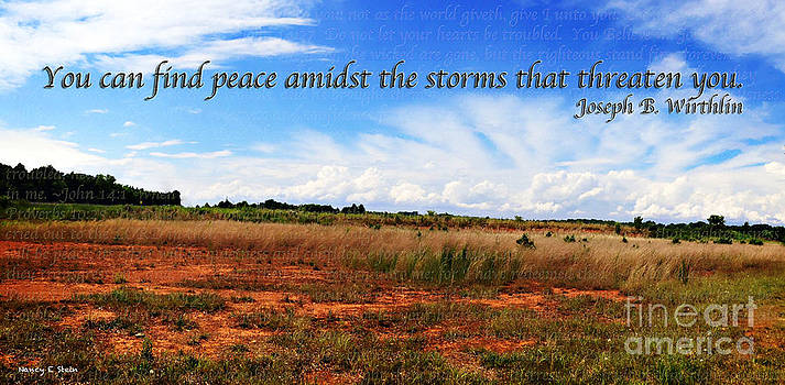 Nancy Stein - Peace Amidst The Storms