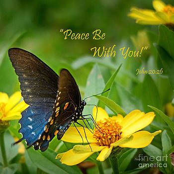 Peace Be With You by Nava Thompson