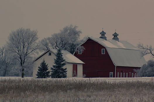 Peace Farm by Jann Kline