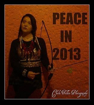 Maryann  DAmico - Peace In 2013