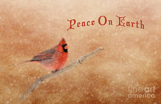 Peace On Earth Cardinal by Pam  Holdsworth