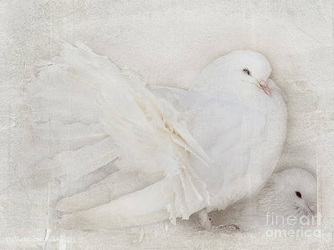Peaceful Existence White on White by Barbara McMahon