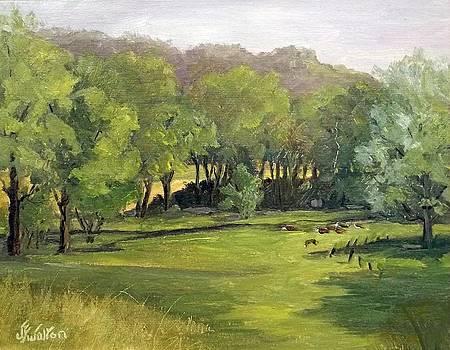 Peaceful Malabar by Judy Fisher Walton