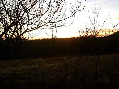 Peaceful Morning by Jeni Tharp