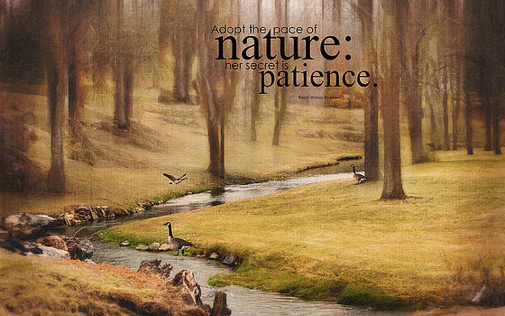 Peaceful Nature by Kathy Jennings