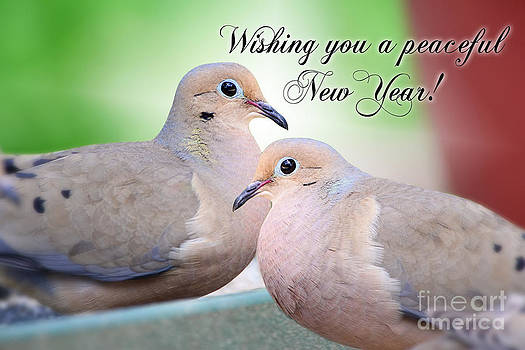 Peaceful New Year by Bonnie Barry