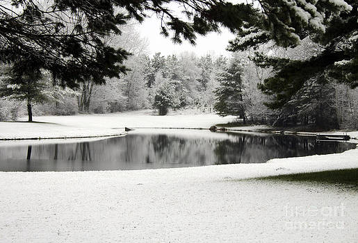 Peaceful Pond in Winter by Kathy DesJardins