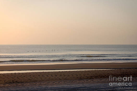 Peaceful Sunrise by Todd Blanchard