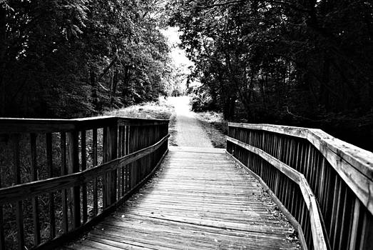Peaceful Walkway BlackWhite by Stephanie Grooms