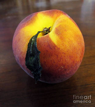 Anne Ferguson - Peach 2