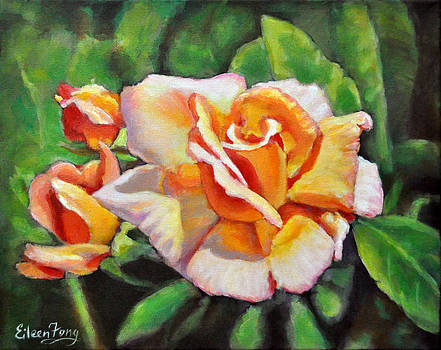 Peach Rose Glows by Eileen  Fong