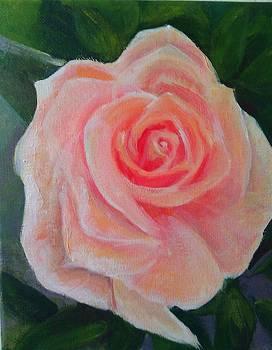 Peach Rose by Karen King