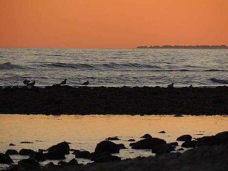 Peach Sunset on the Beach by Anastasia Konn