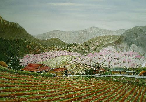 Peach Village by Bryan Ahn