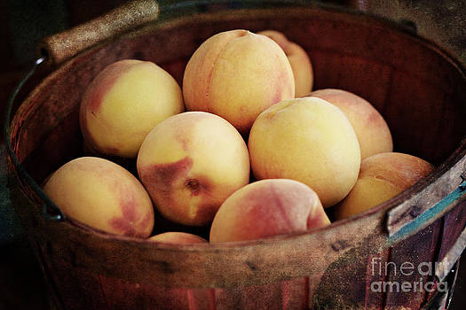 Peaches in a Basket by Pam  Holdsworth