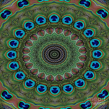 Peacock Abstract by Bel Menpes