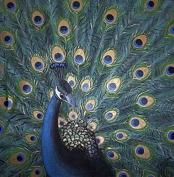 Peacock by Joan Stratton