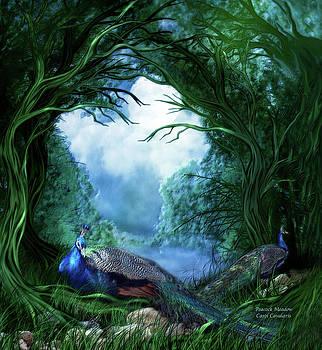 Peacock Meadow by Carol Cavalaris