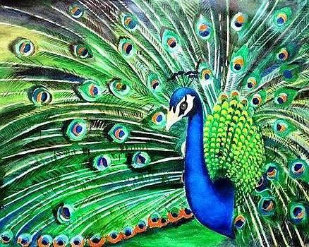 Peacock by Sadhna Tiwari