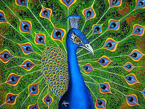 Peacock Splendor by Adele Moscaritolo