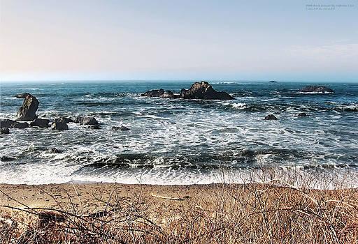 Pebble Beach California by Rafael Escalios