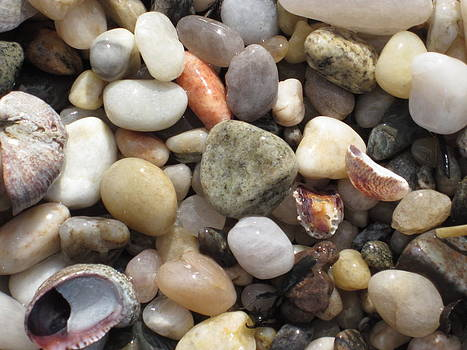 Pebble Beach by Joanna Baker - Jenkins