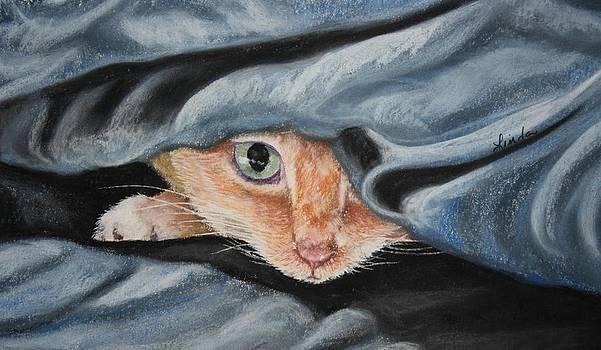 Peek a Boo Blue by Linda Eversole