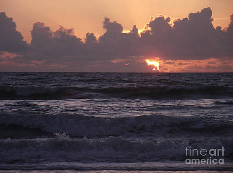 Peek A Boo Sunrise by Virginia Zuelsdorf