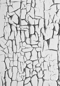 Barbara McMahon - Peeling Paint Three