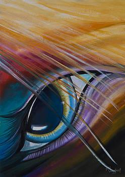 Peeping Eye by Naushad  Waheed