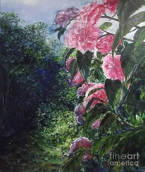 Peeping Pink Peonies by Lizzy Forrester