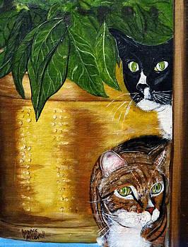 Peeping Tommy by Ecinja