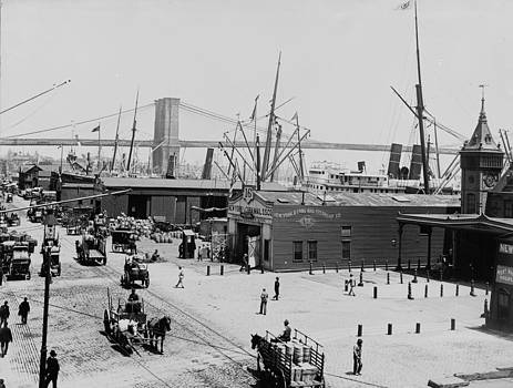 Steve K - Peer 16  Brooklyn Bridge 1900