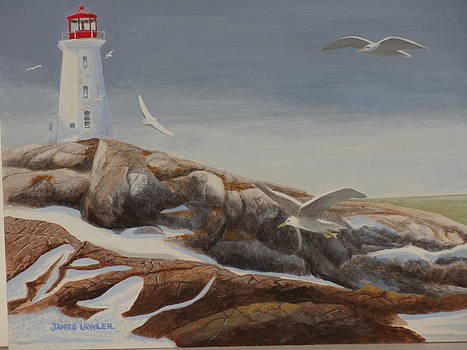 Peggy's Cove  Winter by James Lawler