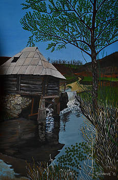 Pehlic Watermill by Ferid Jasarevic