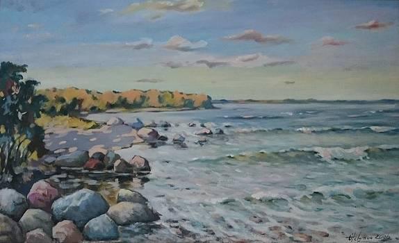 Peipsi Coast by Ylo Telgmaa