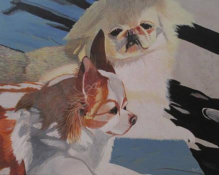 Peke and Chi by Hilda and Jose Garrancho