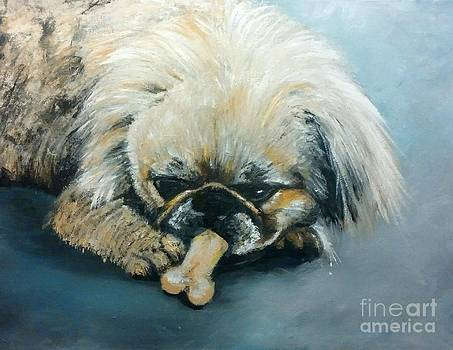 Pekinese and the Bone by Abbie Shores