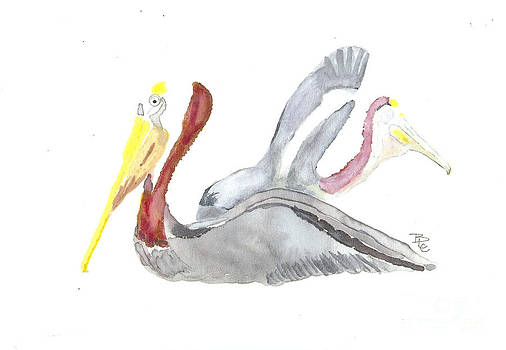 Pelican and mate by Bernadette Crotty