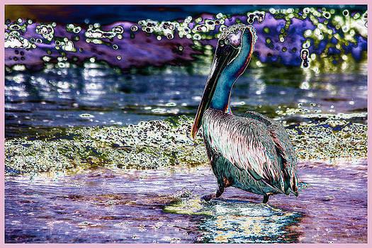 Pelican by Esther Branderhorst