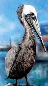 Pelican by Mary Eichert