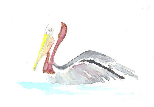 Pelican out for a Swim by Bernadette Crotty