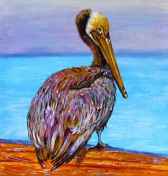 Susan Duxter - Pelican Pete