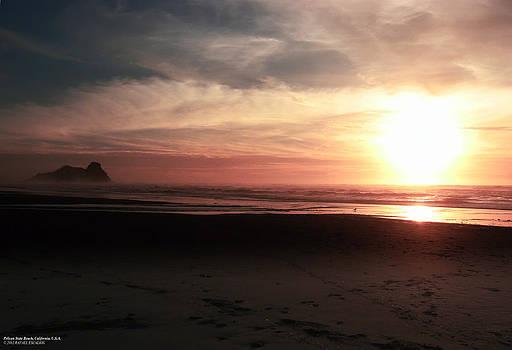 Pelican State Beach California by Rafael Escalios