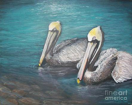 Pelicans in the Water by Jeremy Reed