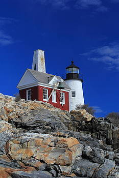 Pemaquid By The Sea by Doug Mills