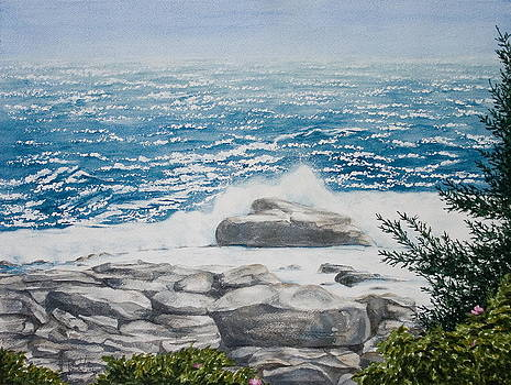 Pemaquid Point by Monika Degan