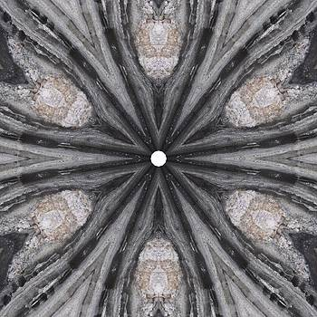 Pemaquid Rock Two by Trina Stephenson