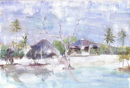 Pemba Bush Camp by David  Hawkins